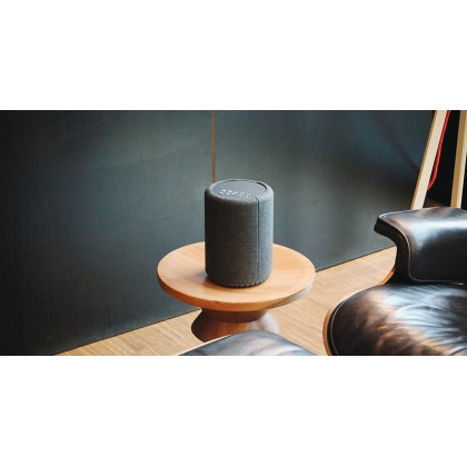 Audio Pro A10 Wireless Multiroom Speaker (WiFi / Bluetooth)